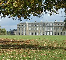 Petworth House, Sussex by Andrew  Marks
