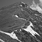 Up the Ridgeline  by Matt Benson