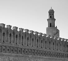 Ibn Tulun Mosque by Andre Roberts