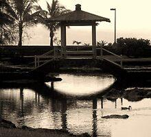 Bridge... by Hannah Fenton-Williams