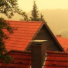 RoofTops by Paul James Farr