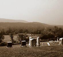101708-1   ON A HILLSIDE IN PENNSYLVANIA by MICKSPIXPHOTOS
