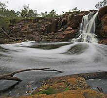Nigretta Falls by Murray Wills