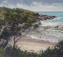 Afternoon Storm, Arrawarra Headland by louisegreen