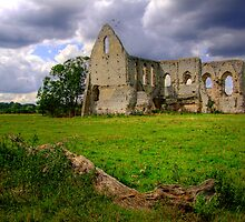 Newark Priory -  Pyford - HDR 1 by Colin J Williams Photography