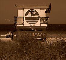 Nostalgia On The Beach ~ Part Three by artisandelimage