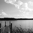 A day by the lake side by jayant