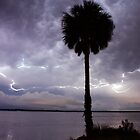 Lightning Capital of the World by Blaze66