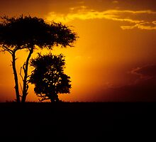 Mara sunset by David Clarke