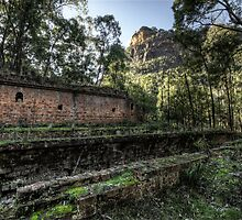 Sandstone Cliffs and Ruins - Newnes - Wollemi National Park, NSW by Jeff Catford