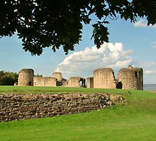 Flint Castle, North Wales, UK by AnnDixon
