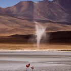 Whirly Wind, Bolivia by Den Williams