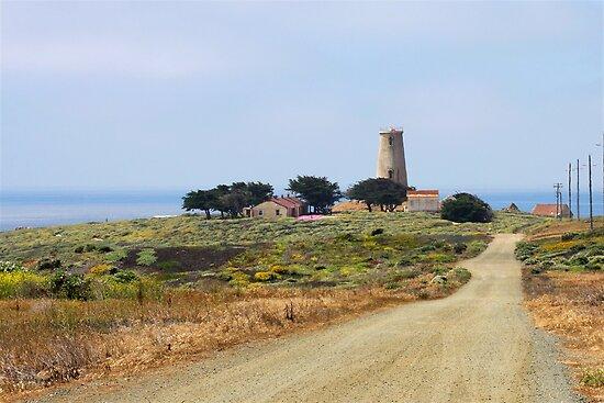 Piedras Blancas Lighthouse, CA by Christine Till  @    CT-Graphics