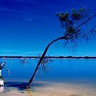 Lake Indoon WA by Joy & Rob Penney