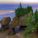 Hopewell Rocks by Jamie Roach