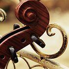 Scroll and Swirls by Anastasia G