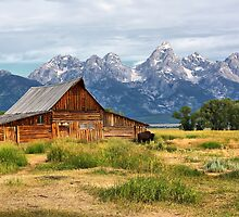Grand Teton National Park by Teresa Zieba