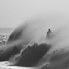 surfing the whitewash by jade adams
