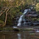 Somersby Falls by Blue Gum Pictures