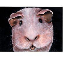 Got any munchies? Acrylic painting 210 views Photographic Print