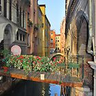 The Colours of Venice by Liam  Outram