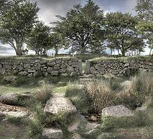 Dartmoor pen by M G  Pettett