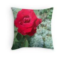 A Rose is a Rose 2 Throw Pillow