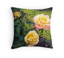 A Rose is a Rose 5 Throw Pillow