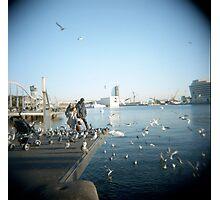 Family Pigeons Photographic Print