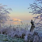 Winter Sunrise by AnnieSnel