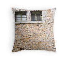 These Prison Walls Throw Pillow