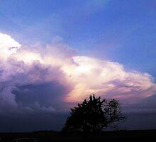 Beautiful Cloud and Beautiful Tree by maragoldlady