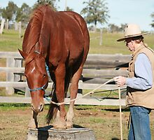 Stetson on the block by Cathie Brooker