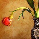 Tulip in Vase by Karen Scrimes