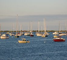 Harbor at dusk by Susan Vogel-Misicka