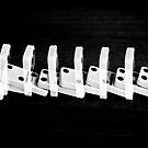 Dominoes by NikonKid