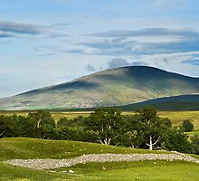 Glen Esk Scenery by Panalot