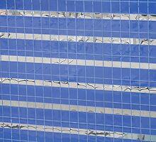 Blue Windows by D.M. Mucha