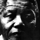 Madiba! by Susan van Zyl