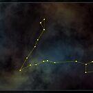 Pisces zodiac by 4Seasons