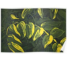 Etching: Leaves in limone Poster