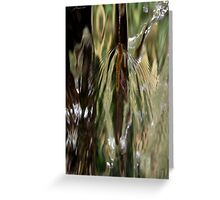 Dances with Water Greeting Card