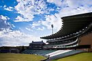 Wanderers Cricket Stadium by RatManDude