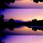 Tallebudgera Evening  by Virginia McGowan