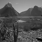 Black and white Milford Sound by chwells
