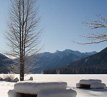 Snowy lake by chwells
