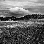 Monteriggioni, Tuscany by Marco Vegni