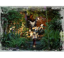 Fairy Dell Night Time Magic Photographic Print