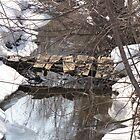 old bridge by cherylsnake