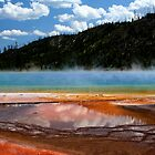 PRISMATIC SPRING by Charlene Aycock